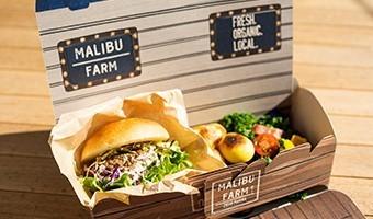 MALIBU lunch box