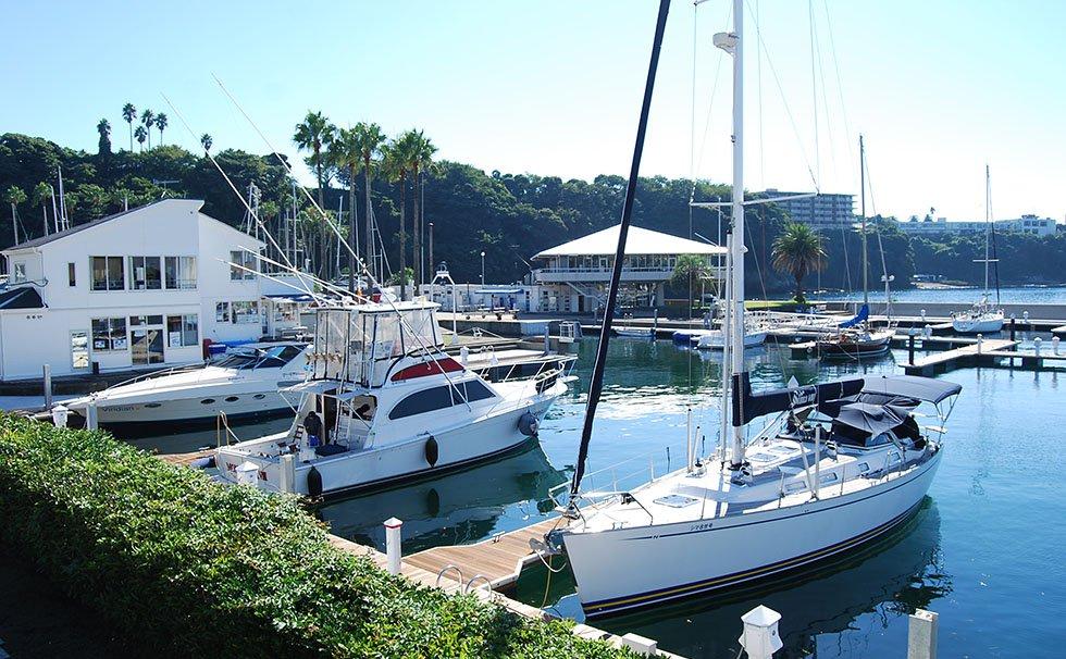 Yotto Harbor